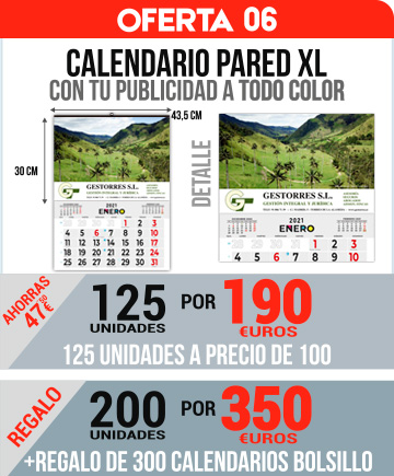 OFERTA 06 CALENDARIOS PARED XL TODO COLOR