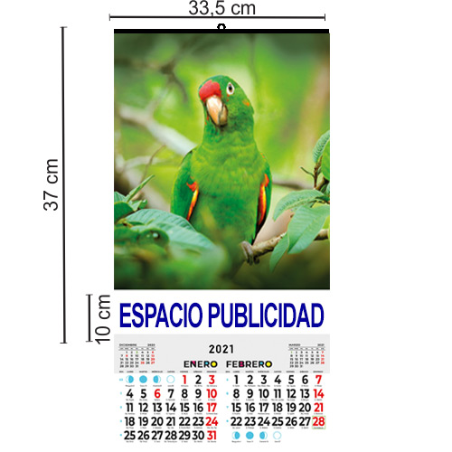 CALENDARIO DOBLE FOLIO BIMENSUAL 33,5 cm