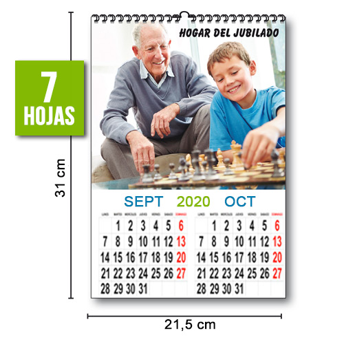 CALENDARIO PARED BIMENSUAL TODO COLOR 21,5cm